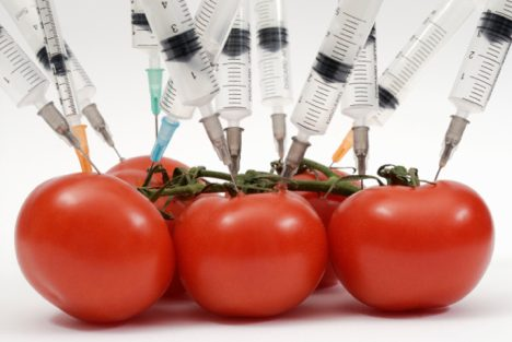 Pros and Cons of GMO Labeling