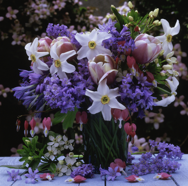 Planning a Perfect Birthday for Her - Spring Flowers