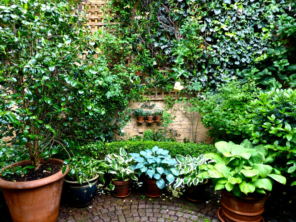 7 Things You Should Remember When Landscaping Your Garden